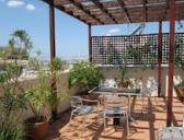 WPC terasy – dřevoplastové terasy - wpc terasy, dřevoplastové terasy, zahradní terasy, terasová podlaha, wpc podlaha, wpc prkna